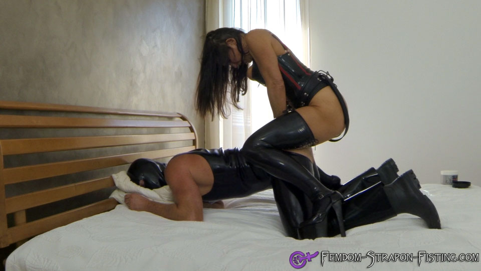 Horse strapon mistress video